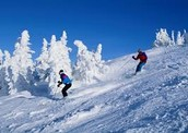 Winter Sport- Skiing
