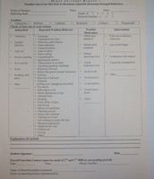 Minor Incident Report Form