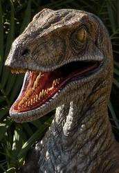 Velciraptor Approved
