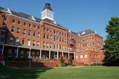 Terrio College
