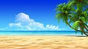 Me gustaba ir a la playa porque me gusta a natación.