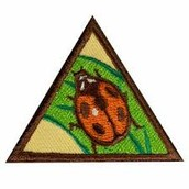 Girls have earned the Bug Legacy badge!
