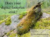 Is your footprint negative?