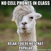 No phones in class