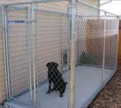 4+ dogs Private kennel license
