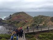 Board Walk at Cape Shanck