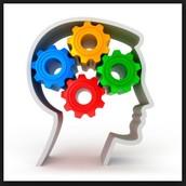 Metacognitive Reading Awareness Surveys