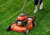 Do you want your lawn looking fabulous, but are not able to or simply just don't want to mow your lawn?