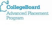 College Board AP/PAP Summer Institute