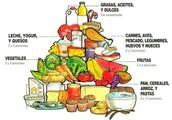 Importancia de conocer la pirámide nutricional