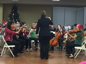 Gators of the Week: RBHS Orchestra Performs