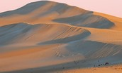 Can Sand dunes Move?
