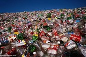 Plastic (any kind)