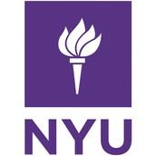 #2 New York University