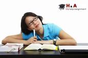 Information Technology Homework Help