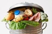 Food waste Must End!