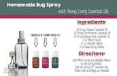 ~Homemade Bugspray~