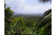 jamaicas land