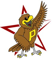 Soaring with Falcon Pride
