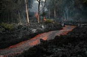 Nature is destroyed by the lava