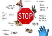Say no to animal testing!!