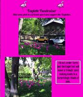 Eaglette Fundraiser
