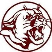 Norfolk Panthers