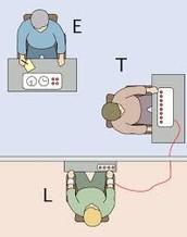Tennis Team: Milgram Experimemt
