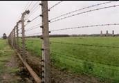 Primeter, Birkenau Camp