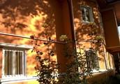 Tinkerbell School, Bucuresti