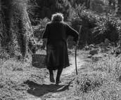 trust is good for elderly