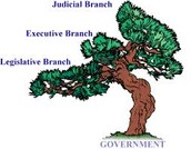 "3 ""branches"" of government"