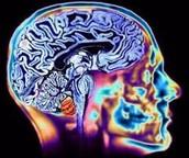 Muscle Control Loss + Mental Decline