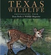 Texas Wildlife Photographs from Texas Parks & Wildlife Magazine