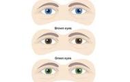 Eye color henetc variation
