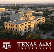 A trip to Texas A&M University at College Station (Cause & effect)