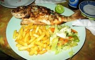 Fries and Fish with toss salad