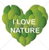 Respecting Nature