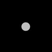 Carbon Ion (-4)