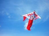 kites 风筝