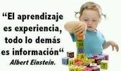 ALBERT EINSTEIN defendía_: