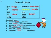 Tener-To Have