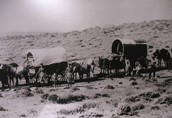 Pioneers and Covered Wagons