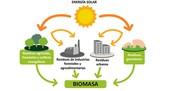 Енергија биомасе