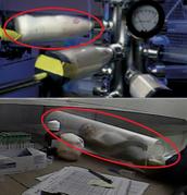 Monkeys Are Frozen in Tubes