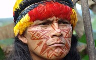 Native Amazonian