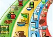 Guide alimentaire canadien,
