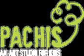 PACHIS, AN ART STUDIO FOR KIDS