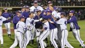 TCU Baseball Program