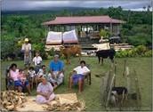 Poutasi, village